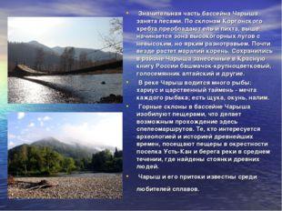 Значительная часть бассейна Чарыша занята лесами. По склонам Коргонского хре