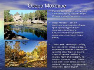 Озеро Моховое Расположено в Курьинском районе Алтайского края у подножья горы