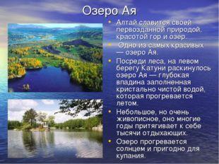 Озеро Ая Алтай славится своей первозданной природой, красотой гор и озер. Одн