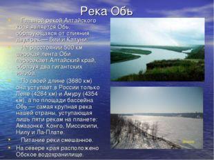Река Обь Главной рекой Алтайского края является Обь, образующаяся от слияния