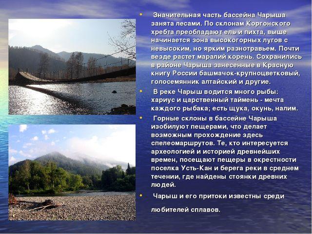 Значительная часть бассейна Чарыша занята лесами. По склонам Коргонского хре...