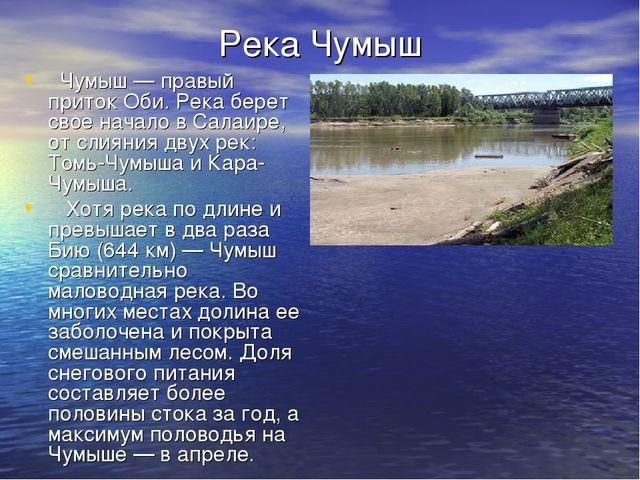 Река Чумыш Чумыш — правый приток Оби. Река берет свое начало в Салаире, от сл...