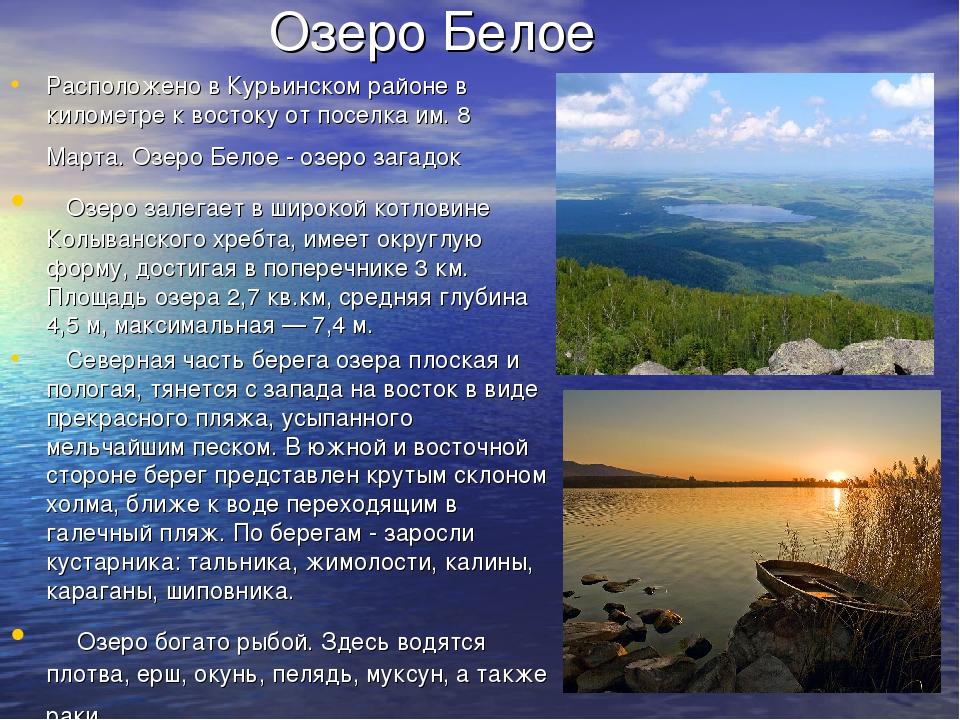 Озеро Белое Расположено в Курьинском районе в километре к востоку от поселка...