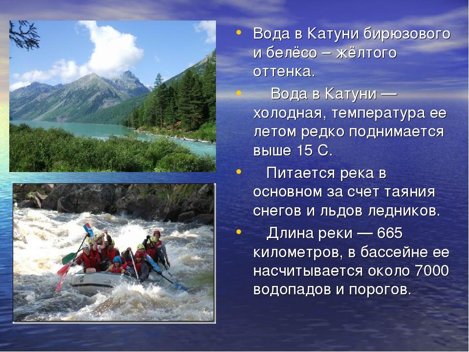 Вода в Катуни бирюзового и белёсо – жёлтого оттенка. Вода в Катуни — холодная...