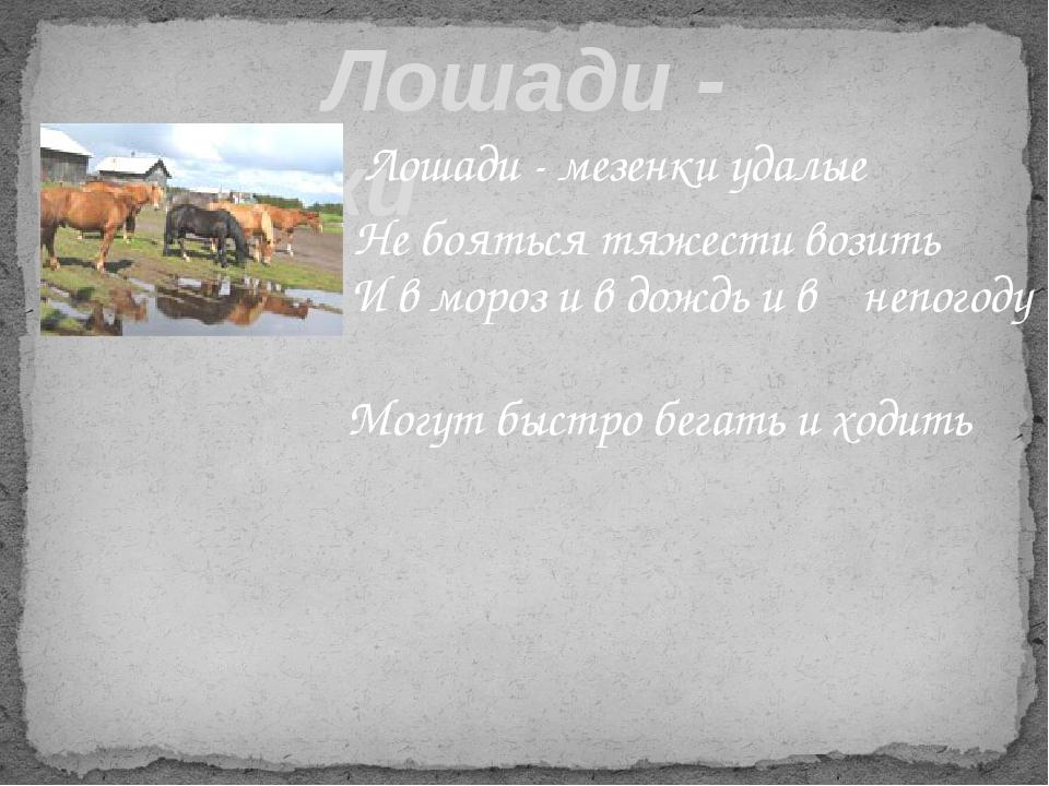 Лошади - мезенки Лошади - мезенки удалые Не бояться тяжести возить  И в м...