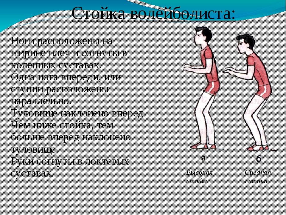 Стойка волейболиста: Ноги расположены на ширине плеч и согнуты в коленных сус...