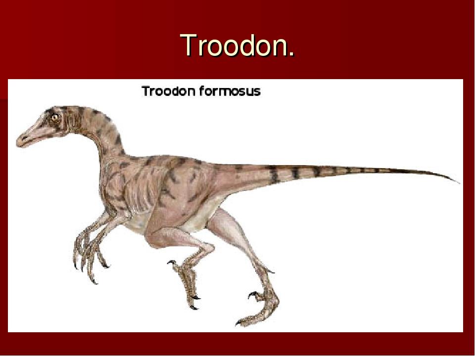 Troodon.