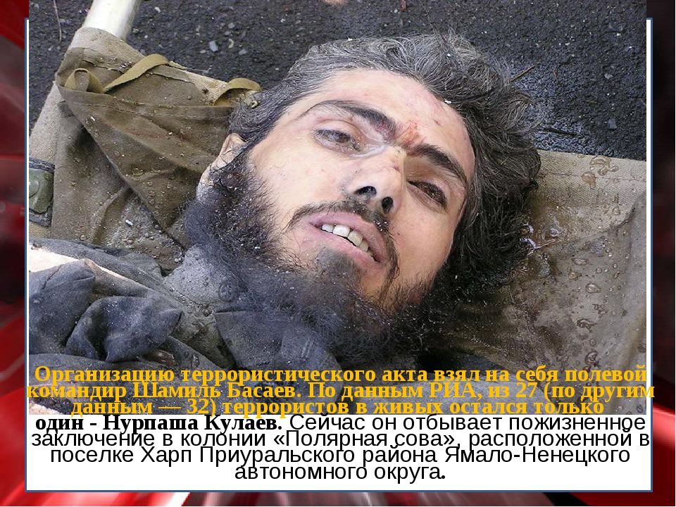 Организацию террористического акта взял на себя полевой командир Шамиль Басае...