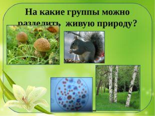 На какие группы можно разделить живую природу? ©Ольга Михайловна Носова