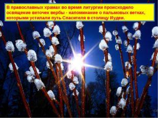 В православных храмах во время литургии происходило освящение веточек вербы -