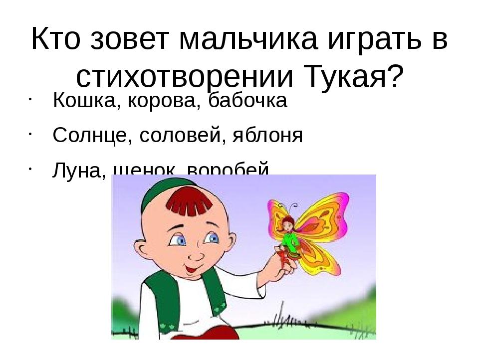 Кто зовет мальчика играть в стихотворении Тукая? Кошка, корова, бабочка Солнц...