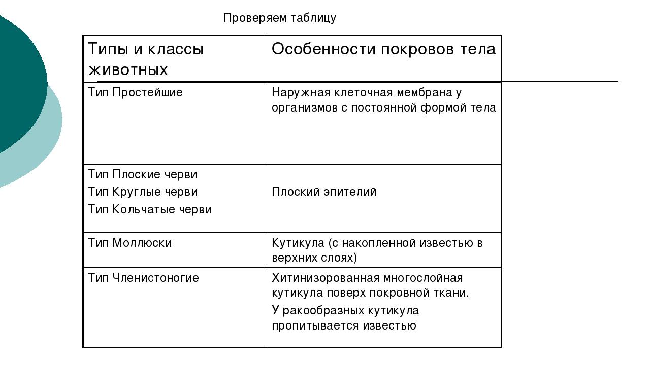 Проверяем таблицу Типы и классы животных Особенности покровов тела Тип Просте...