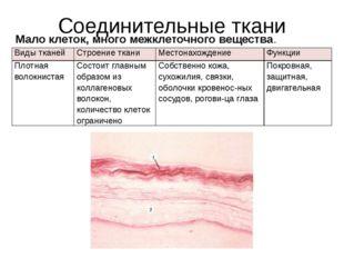 Соединительные ткани Мало клеток, много межклеточного вещества. Видытканей Ст