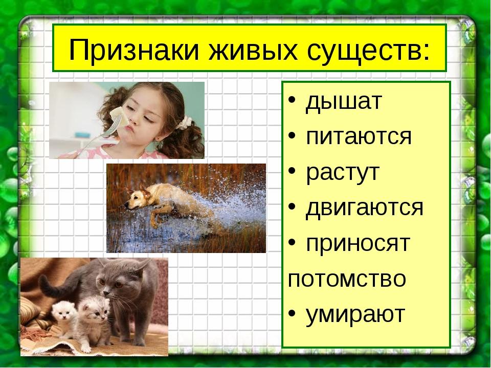 Признаки живых существ: дышат питаются растут двигаются приносят потомство ум...