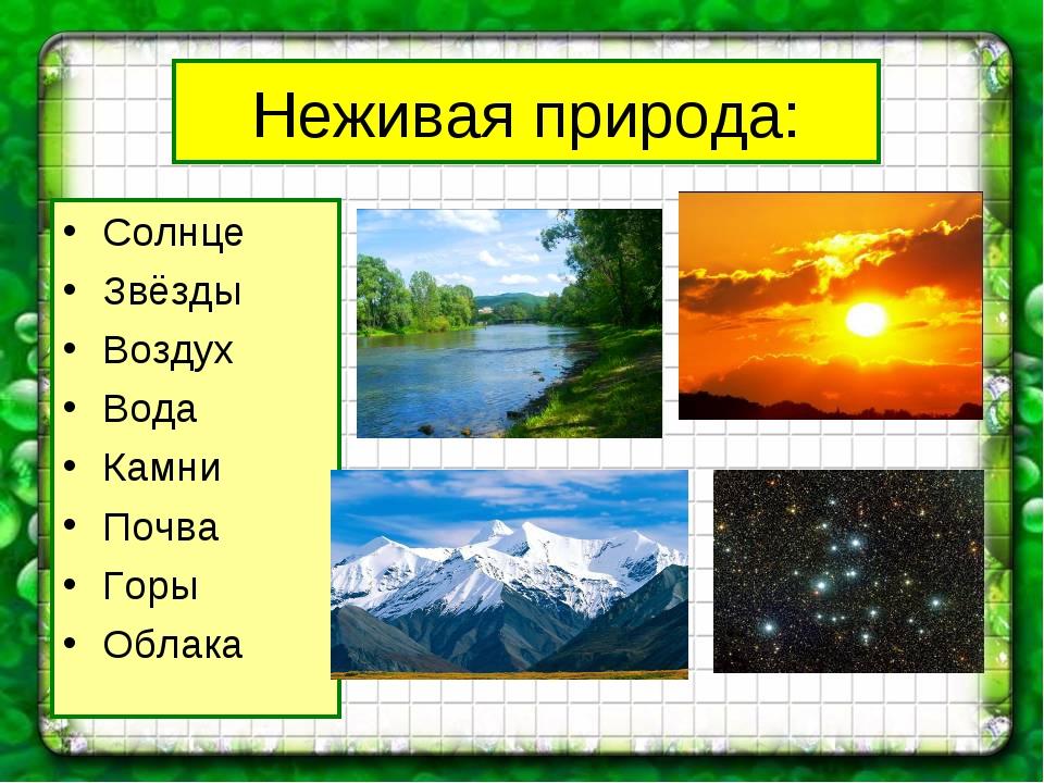 Неживая природа: Солнце Звёзды Воздух Вода Камни Почва Горы Облака