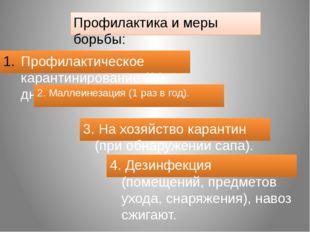 Профилактика и меры борьбы: Профилактическое карантинирование (30 дней). 2. М