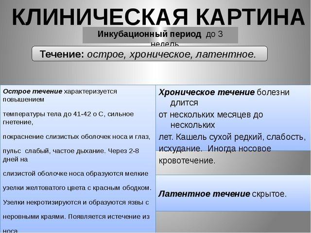 Острое течение характеризуется повышением температуры тела до 41-42 о С, сил...