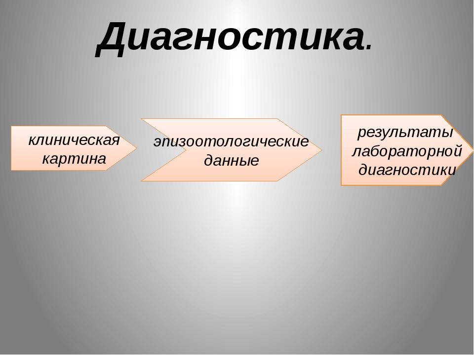 Диагностика. клиническая картина результаты лабораторной диагностики эпизоото...