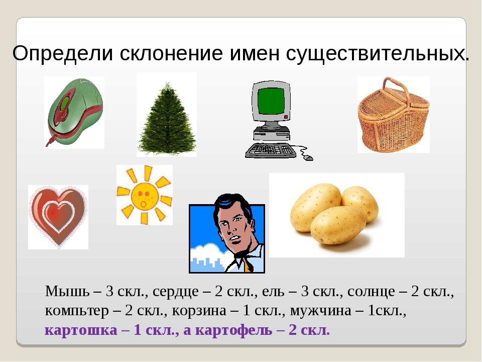Определи склонение имен существительных. Мышь – 3 скл., сердце – 2 скл., ель...