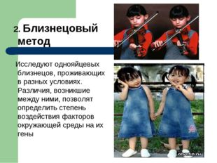 2. Близнецовый метод Исследуют однояйцевых близнецов, проживающих в разных у