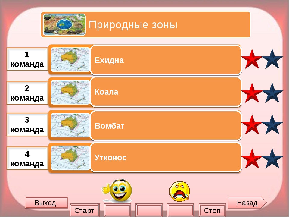 Назад Выход Ехидна Коала Вомбат Утконос Старт Стоп