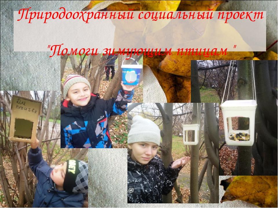 """Природоохранный социальный проект """"Помоги зимующим птицам """""""
