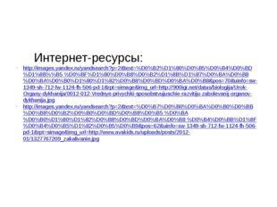 Интернет-ресурсы: http://images.yandex.ru/yandsearch?p=2&text=%D0%B2%D1%80%D