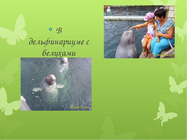 В дельфинариуме с белухами