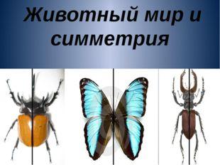Животный мир и симметрия
