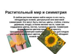 Растительный мир и симметрия В любом растении можно найти какую-то его часть,