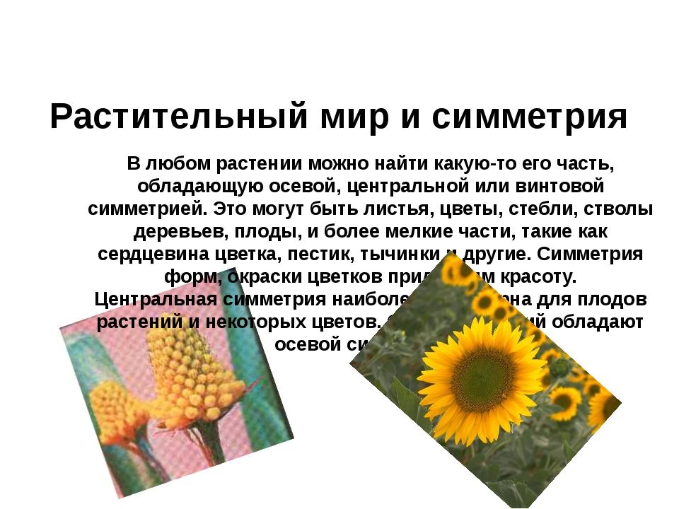 Растительный мир и симметрия В любом растении можно найти какую-то его часть,...