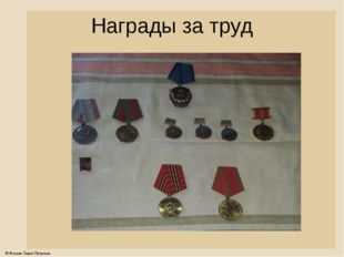 Награды за труд © Фокина Лидия Петровна