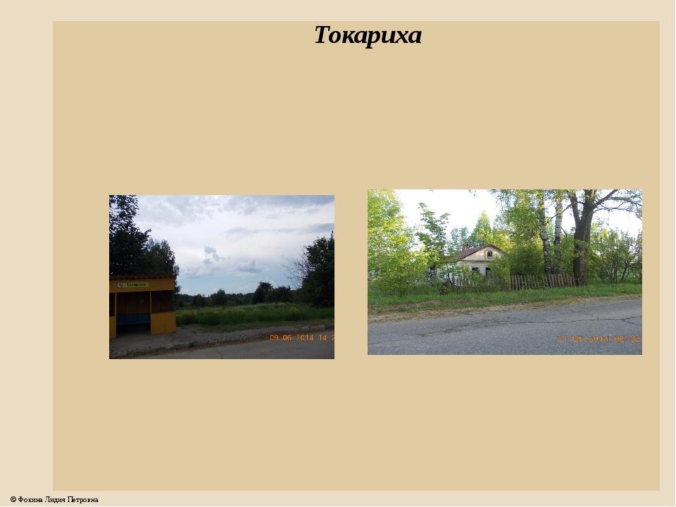 Токариха © Фокина Лидия Петровна