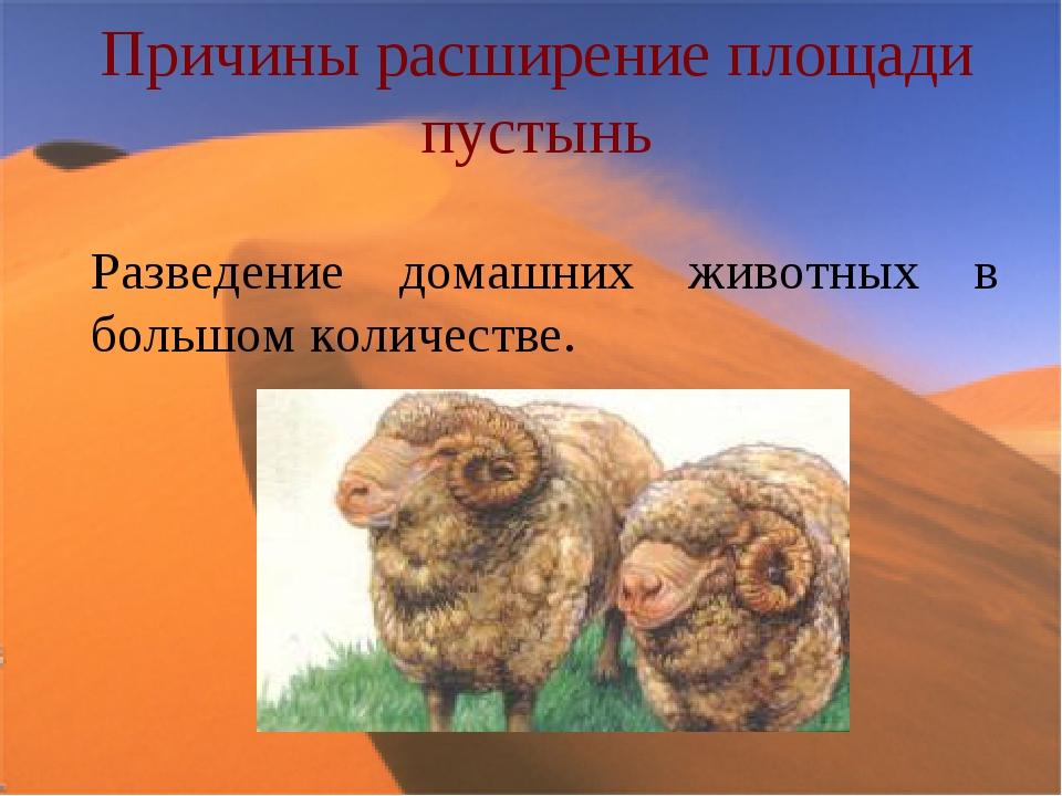 Причины расширение площади пустынь Разведение домашних животных в большом кол...