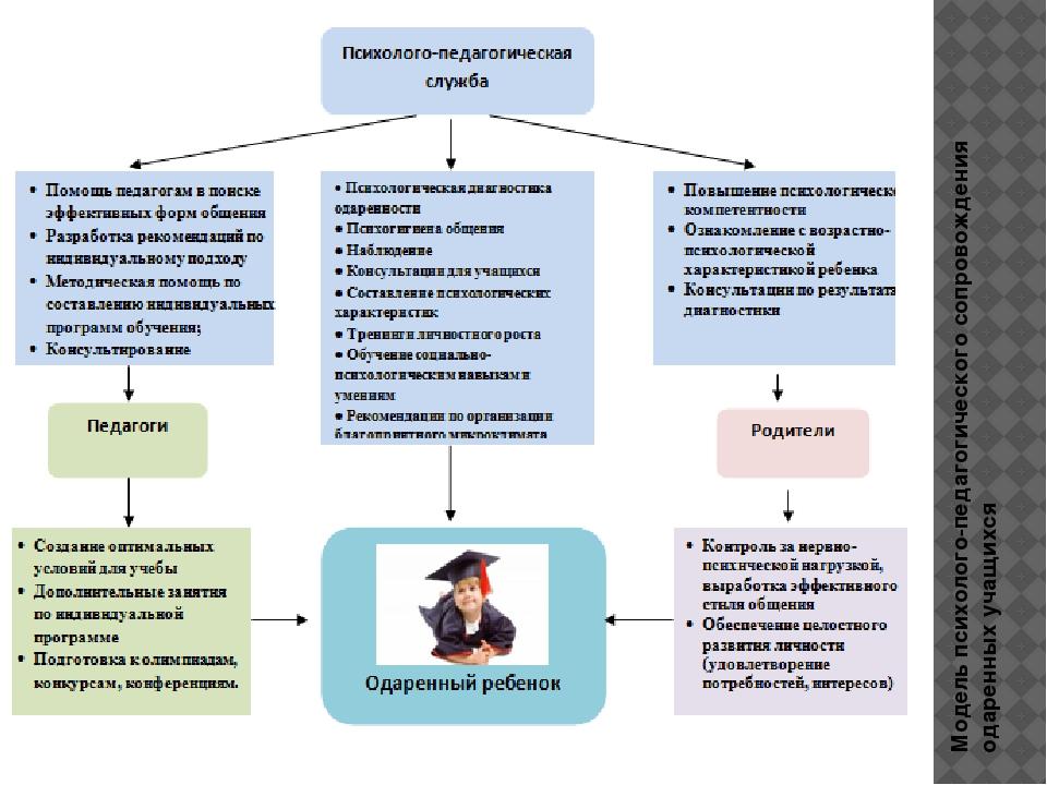 Модель психолого-педагогического сопровождения одаренных учащихся