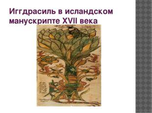 Иггдрасиль в исландском манускрипте XVII века