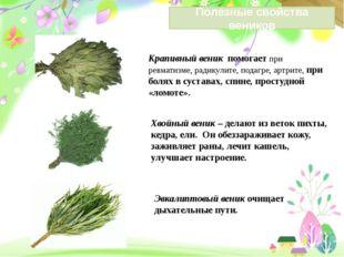 Крапивный веник помогает при ревматизме, радикулите, подагре, артрите, при