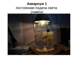 Аквариум 1 постоянная подача света (лампа)