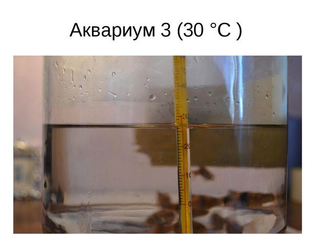 Аквариум 3 (30 °C )