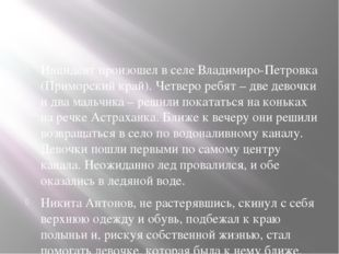 Инцидент произошел в селе Владимиро-Петровка (Приморский край). Четверо ребя