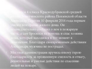 Учащийся 4 класса Краснодубравской средней школы Земетчинского района Пензен