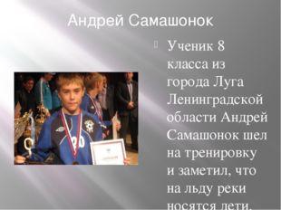 Андрей Самашонок Ученик 8 класса из города Луга Ленинградской области Андрей