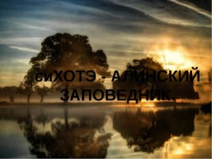 сиХОТЭ - АЛИНСКИЙ ЗАПОВЕДНИК.