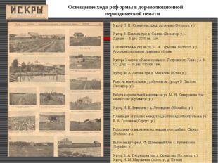 Освещение хода реформы в дореволюционной периодической печати Хутор П. П. Ку