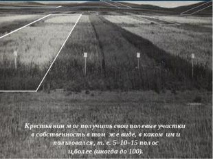 Крестьянин мог получить свои полевые участки в собственность в том же виде, в