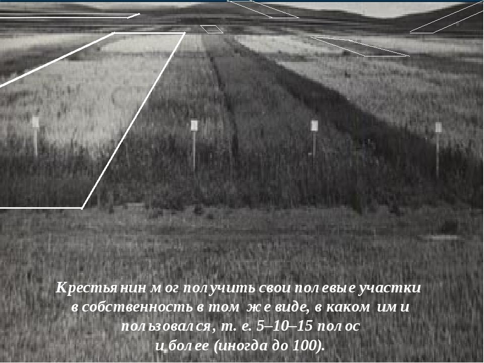 Крестьянин мог получить свои полевые участки в собственность в том же виде, в...