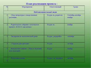 План реализации проекта : №Мероприятия Ответственный Сроки Подготовительн