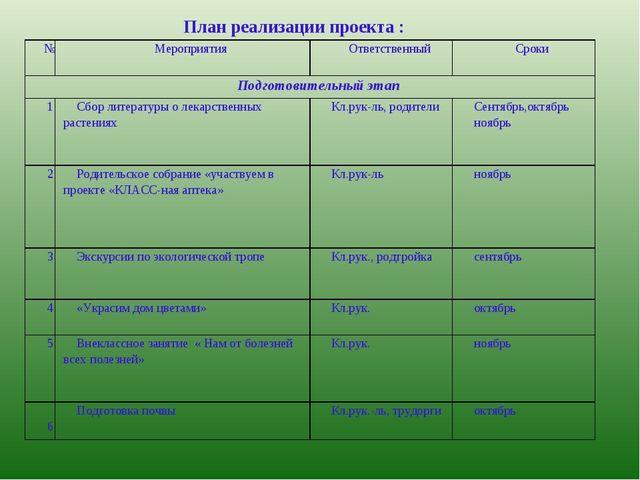 План реализации проекта : №Мероприятия Ответственный Сроки Подготовительн...
