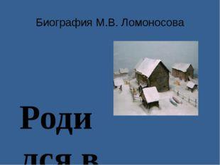 Биография М.В. Ломоносова Родился в 1711 году в Архангельской губернии в д. Д