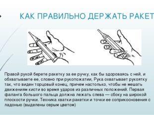 КАК ПРАВИЛЬНО ДЕРЖАТЬ РАКЕТКУ Правой рукой берете ракетку за ее ручку, как бы